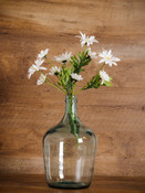 clear glass bottle vase