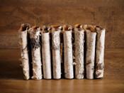 Birch Bark Multi Vase