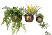 Round Metal Planter with Antique Brass Finish. 3 sizes available.