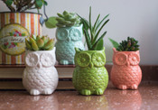 Colorful Green Stoneware Owl Vase with Magnet.