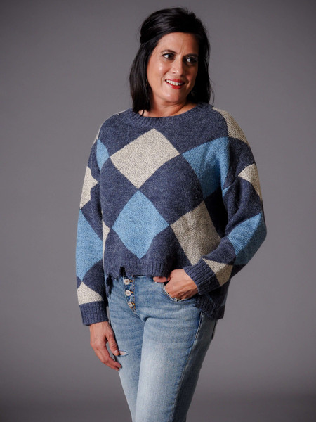 navy blue and taupe argyle sweater