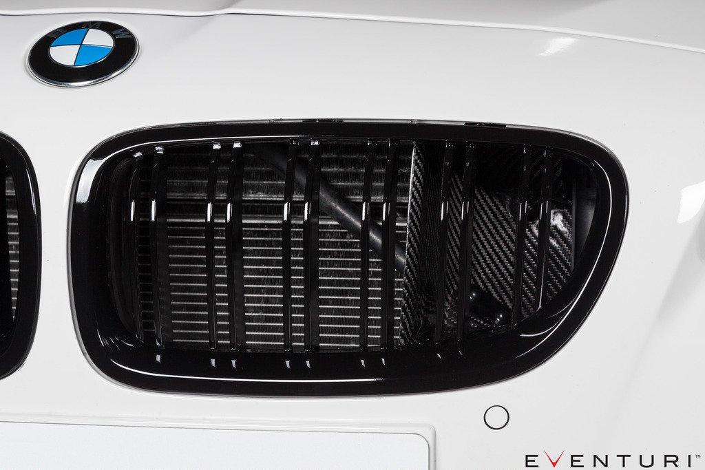 eventuri-bmw-f10-m5-carbon-performance-intake-12-ssdd.jpg