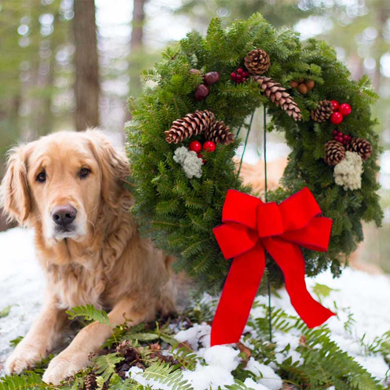 Christmas Wreaths.Original Christmas Wreath