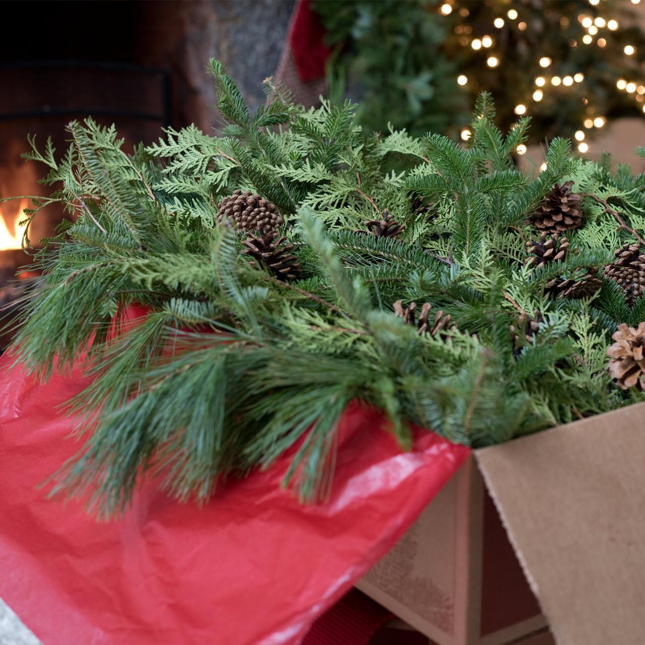 Evergreen Christmas.Big Box Of Greens Christmas Decorations