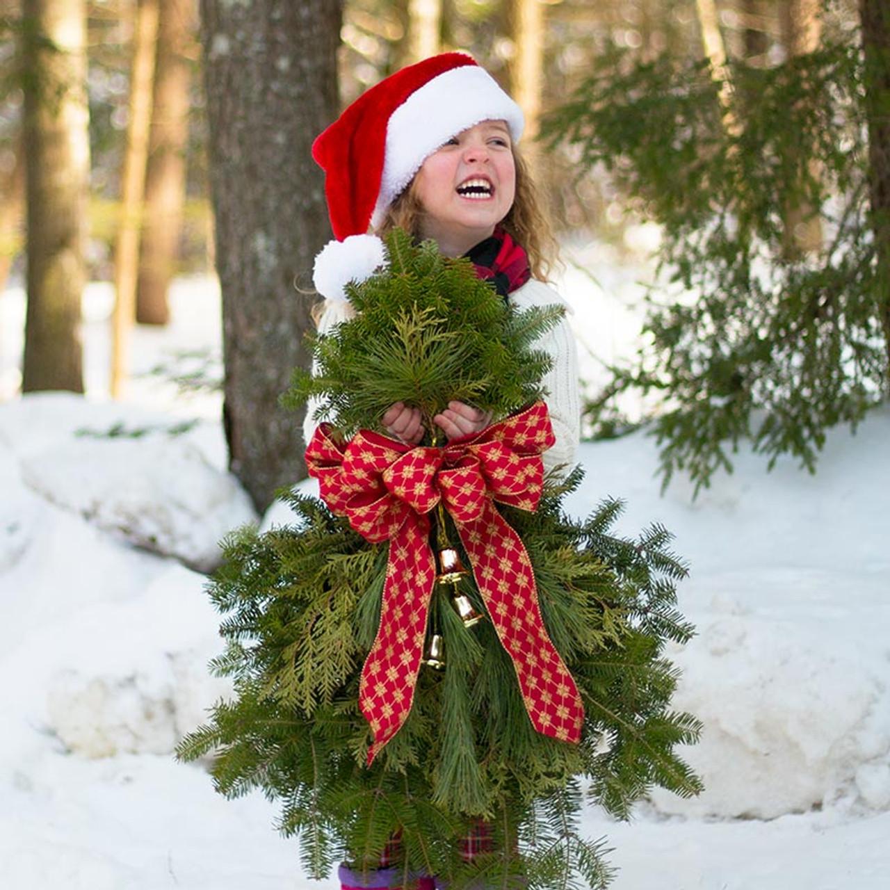 Evergreen Christmas.Christmas Door Swag