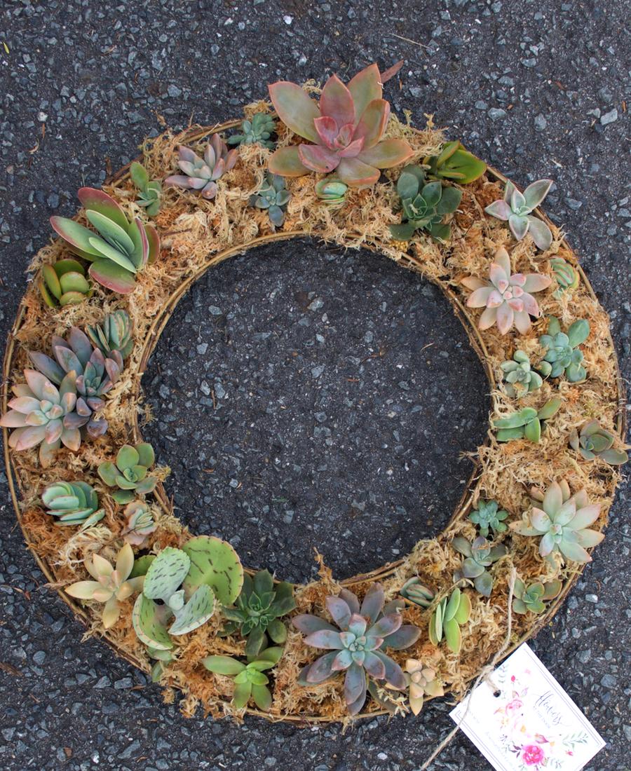 Living Wreath of mixed succulents