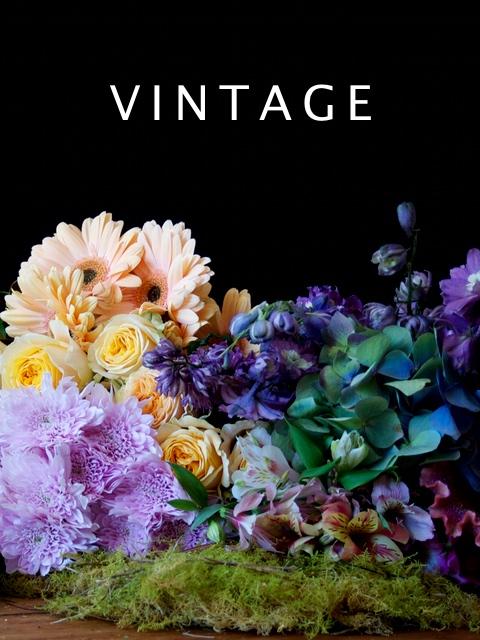 Colour Palette Vintage