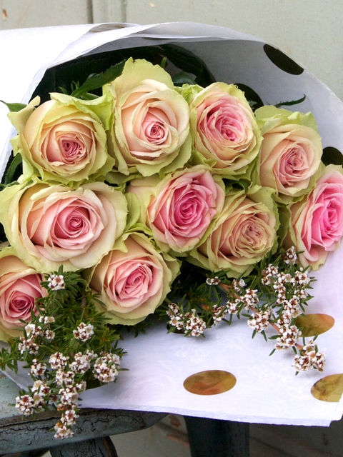 All Occasion Flowers Market Wrapped Roses