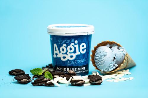 Aggie Blue Mint Pint Cup