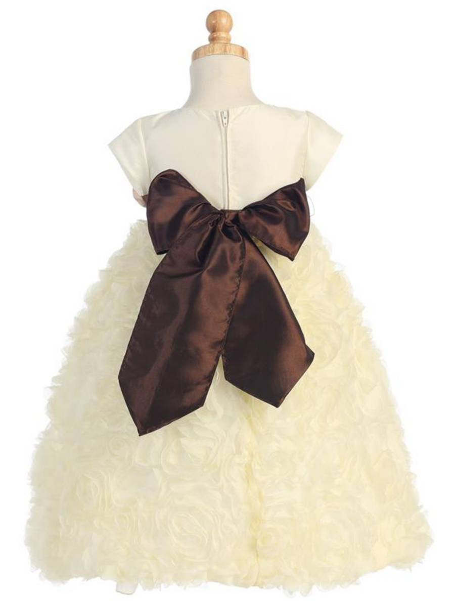 Girls Ivory and White Taffeta and Tulle with Chiffon Dress Flower Sash and Bow in Back
