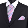 Striped & Solid Tie with Matching Hanky Box Set - THX12-PK-1