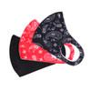 3pcs Paisley Novelty & Solid Face Mask - 3PPE-NV3