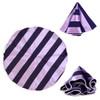 Striped Tie & Matching Pocket Round Set MPWTH170337