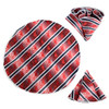 Striped Paisley Tie & Matching Pocket Round Set MPWTH170638
