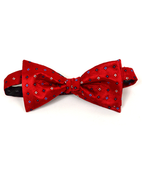 Silk Woven Freestyle Bow Tie FBS4701