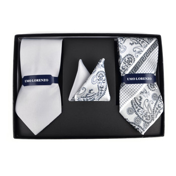 Paisley & Solid Tie with Matching Hanky Box Set - THX12-SIL-1