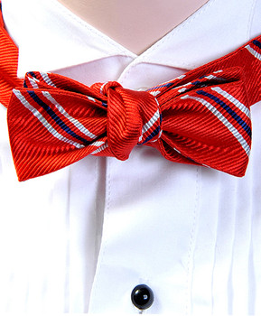 Silk Fancy Freestyle Crossover Bow Tie for Ladies FBS4001rd