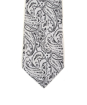"Boy's 49"" Micro Fiber Poly Woven Tie MPWB2801a"