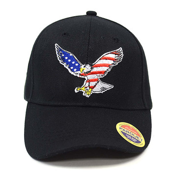 American Eagle Black Embroidered Baseball Cap