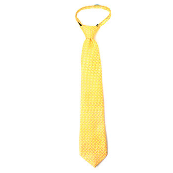 "Boy's 14"" Small Paisley Yellow Zipper Tie"