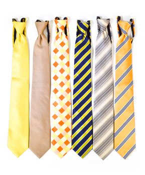 6pc. Assorted Men's Micro Woven Zipper Ties MPWZ5340