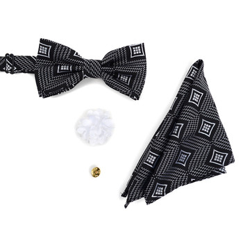 Geometric Banded Bow Tie, Matching Hanky & Lapel Pin Set BTHLB07024M