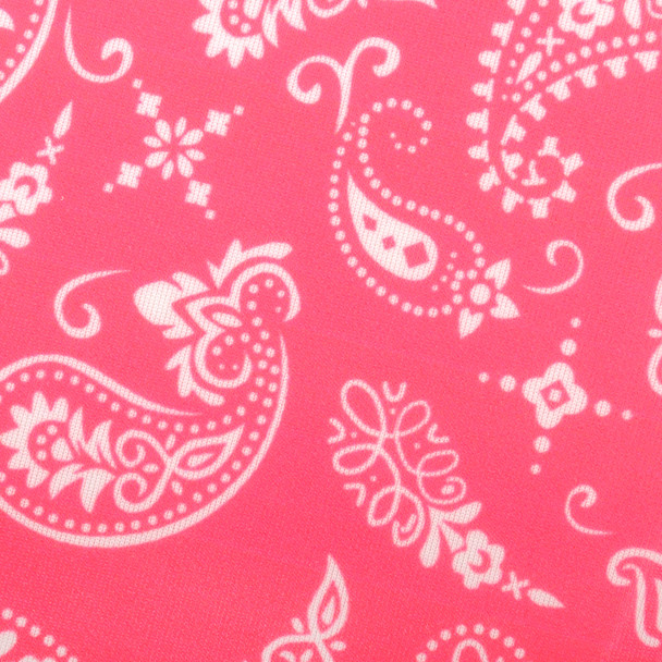 Hot Pink Paisley Print Fashion Face Mask - PPE18