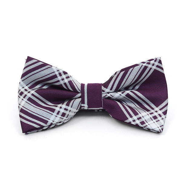 Plaid Banded Bow Tie, Matching Hanky & Purple Lapel Pin Set BTHLB07060