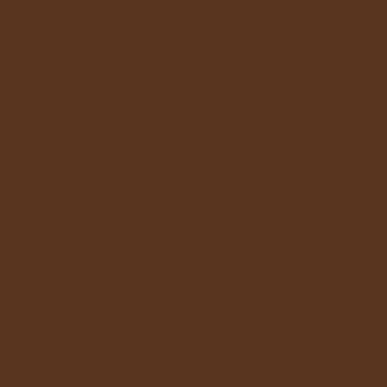RAL 8007 Fawn Brown 9840-81059R