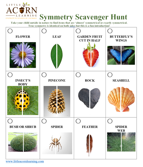 Free Nature Symmetry Scavenger Hunt