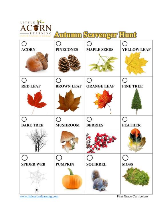 Free Autumn Scavenger Hunt