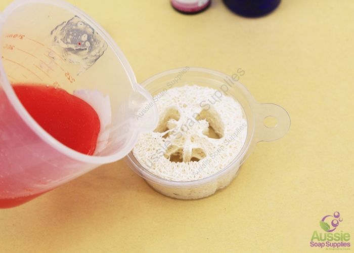 Loofah Melt & Pour Soap Kit and Tutorial