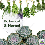 Botanical & Herbal Scents
