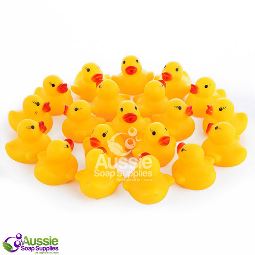 Ducks - Baby Duckling