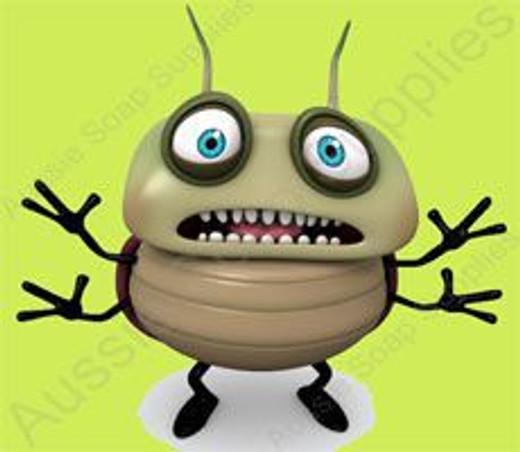 Bugs Bugs Bugs!