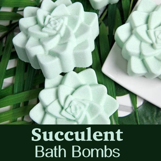 Succulent Bath Bomb Project by Bramble Berry