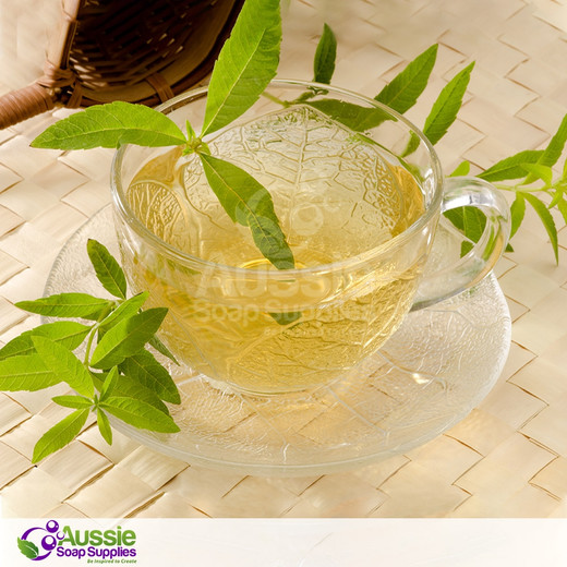 Lemon Verbena (Type) Fragrance *In stock