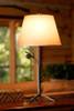 Evergreen Iron Table Lamp