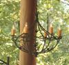 Evergreen Iron Chandelier 6 Arm