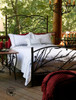 Evergreen Wrought Iron Bed