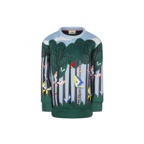 Sweatshirt multicolor over neoprene, crew-neck with long sleeves; It is decorated with the press of a forest, with trees and butterflies.