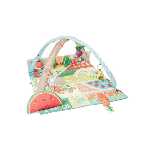 Playing with food is a good thing! A colorful garden of fun fruits, veggies and more, this Farmstand Grow & Play Activity Gym stimulates baby's senses and continues to teach as they grow.