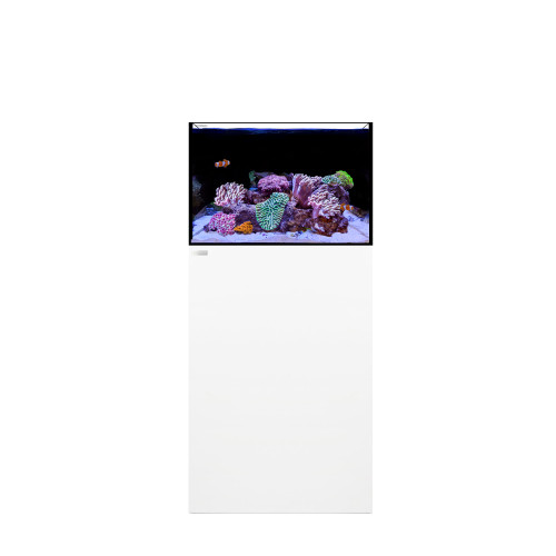 FRAG 55.2 Waterbox Aquarium
