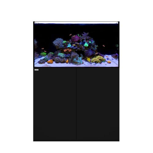 REEF 100.3 Waterbox Aquarium