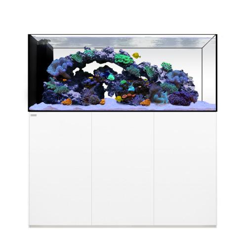 PENINSULA 6025 Waterbox Aquarium