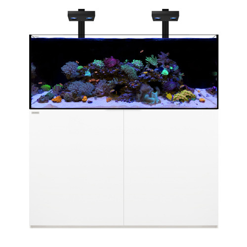 REEF 130.4 Waterbox Aquarium