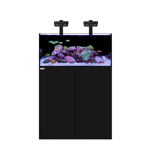 FRAG 85.3 Waterbox Aquarium