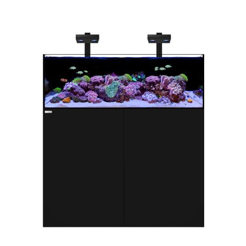 FRAG 105.4 Waterbox Aquarium