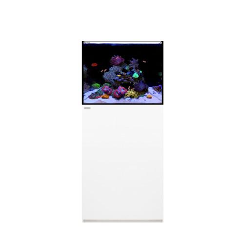 MARINE 45.2 Waterbox Aquarium