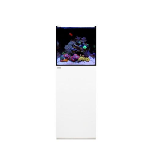 MARINE 35.1 Waterbox Aquarium